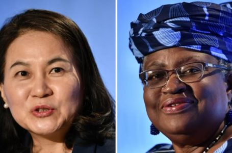WTO: Why the United States rejected Nigerian candidate Ngozi Okonjo-Iweala